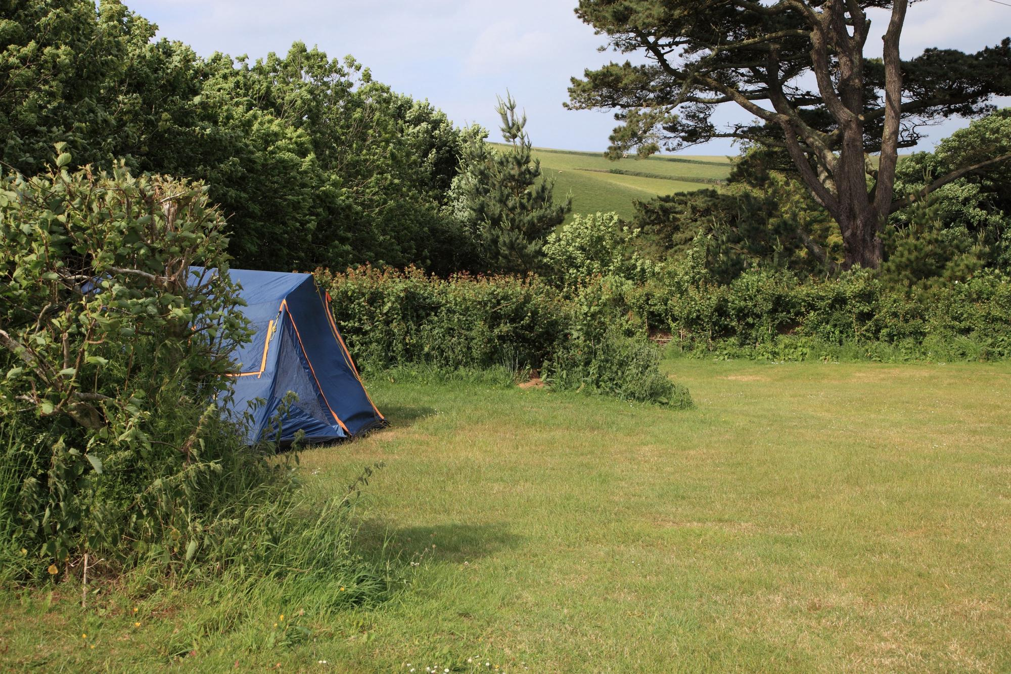 Torquay Camping | Best campsites in Torquay, Devon