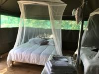 Desert Tent Takla-Makan
