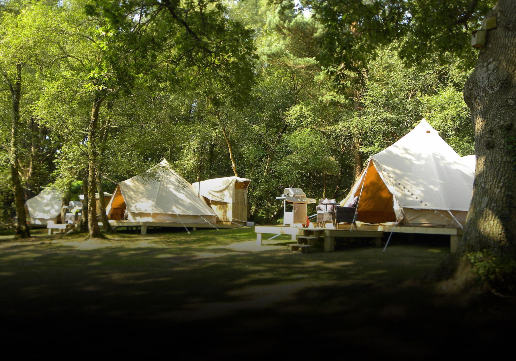 Free glamping for the kids