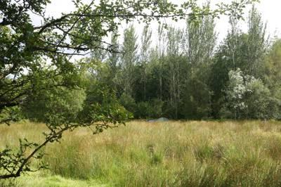 Gwalia Farm Gwalia Farm, Cemmaes, Machynlleth, Powys SY20 9PZ
