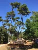 Classic IV Wood & Canvas Tent