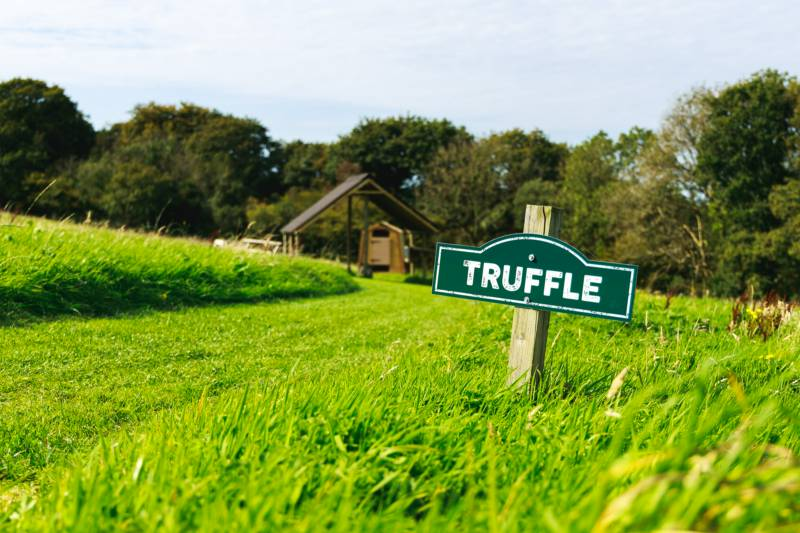 Truffle - Ensuite Grass Pitch