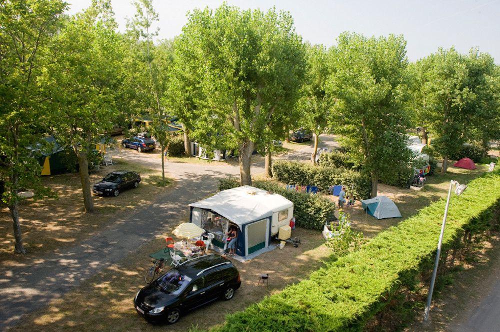 Campsites in Bala