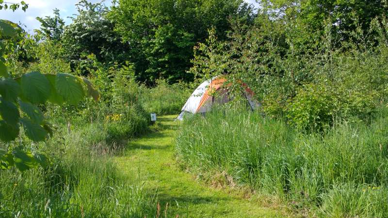 Small grass pitch for tents only - campsite 1