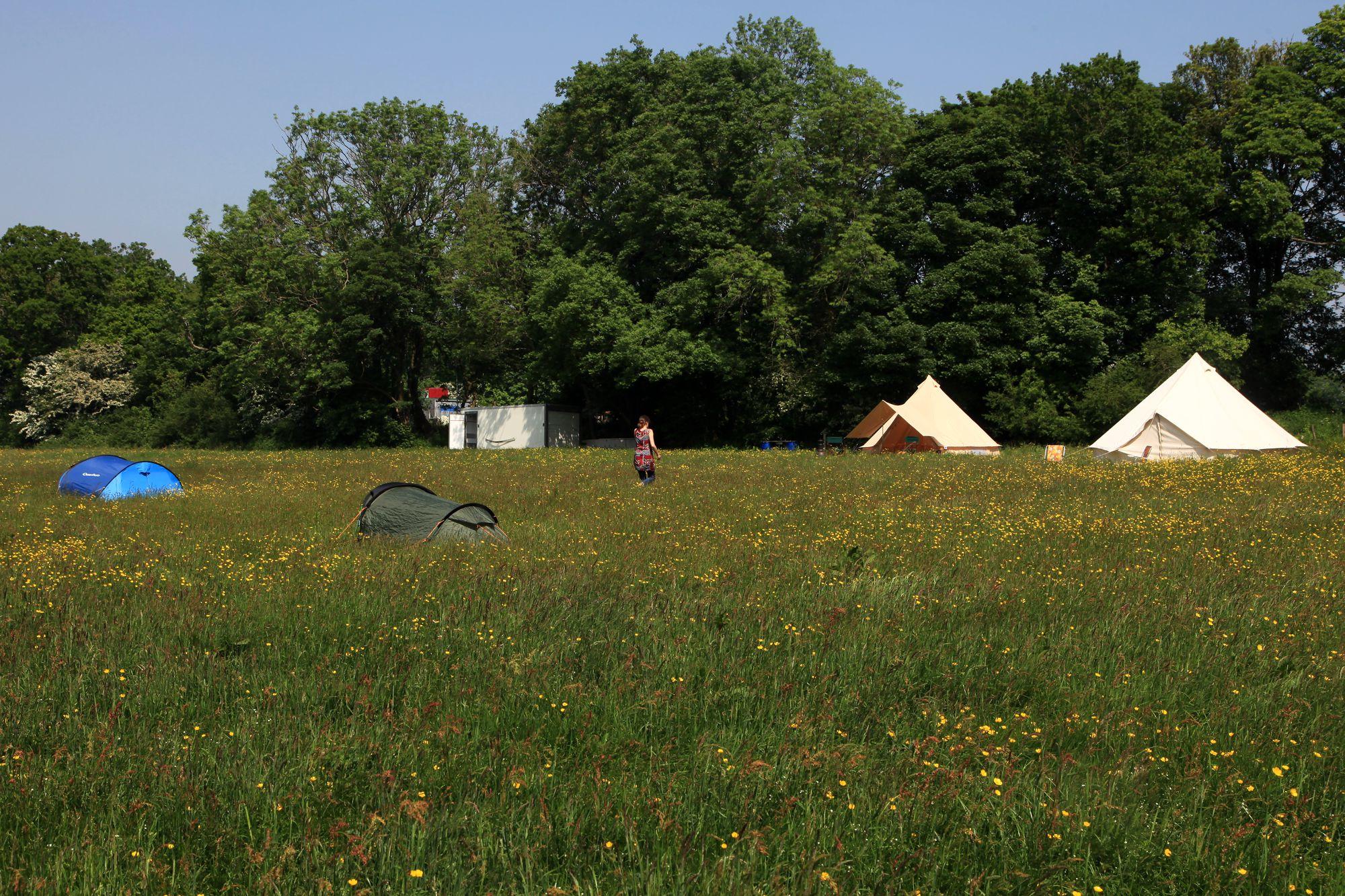 Pete's Field