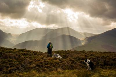 A family-friendly Lake District campsite, nestled between the quiet shores of Bassenthwaite Lake and the beautiful Cumbrian fells.