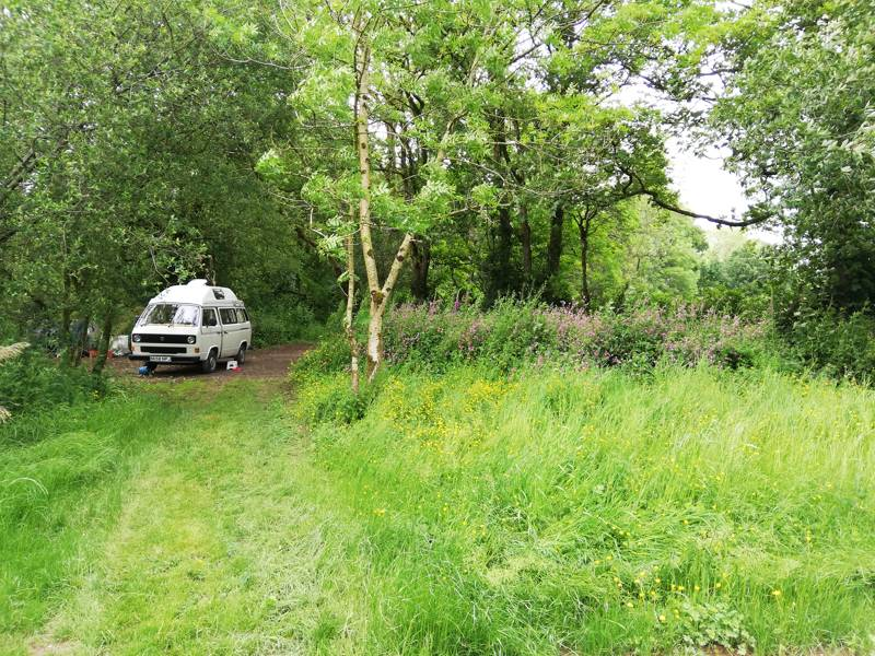 A campervan occupies a smaller clearing at Digs in the Wigs campsite, on the southern edge of Pembrokeshire's Preseli Hills.