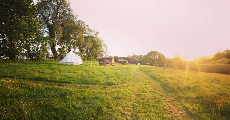 Wildflower Meadow Camping Pitch