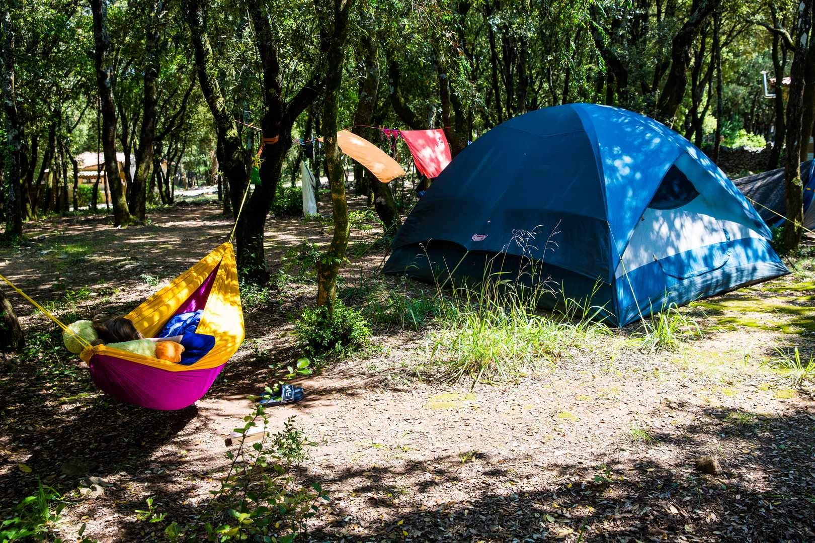 Glamping in Ardèche holidays at Glampingly