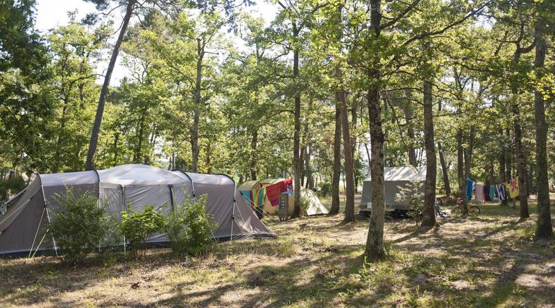 10% Off Huttopia Campsites in France – Early Bird Discount