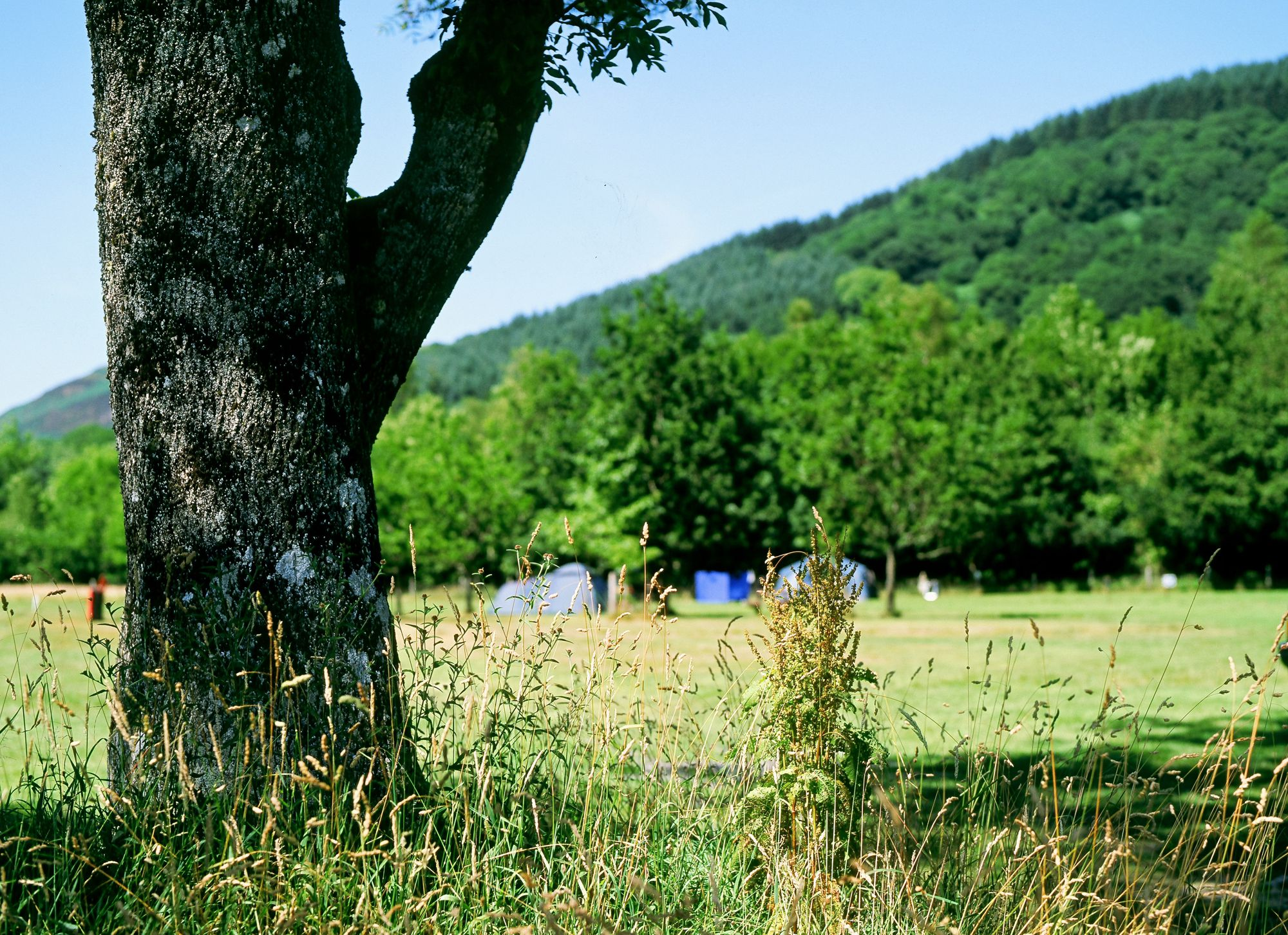 Camping and Caravanning Club Sites - UK Campsites and Caravan Sites