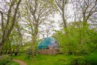 Spacious Dome Oak