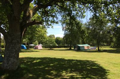 An adults only campsite and glampsite that lives up to its name with a quiet rural feel despite having fantastic access to the rest of Dorset.