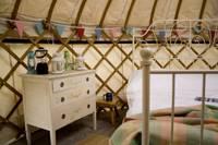 Yurt Ash