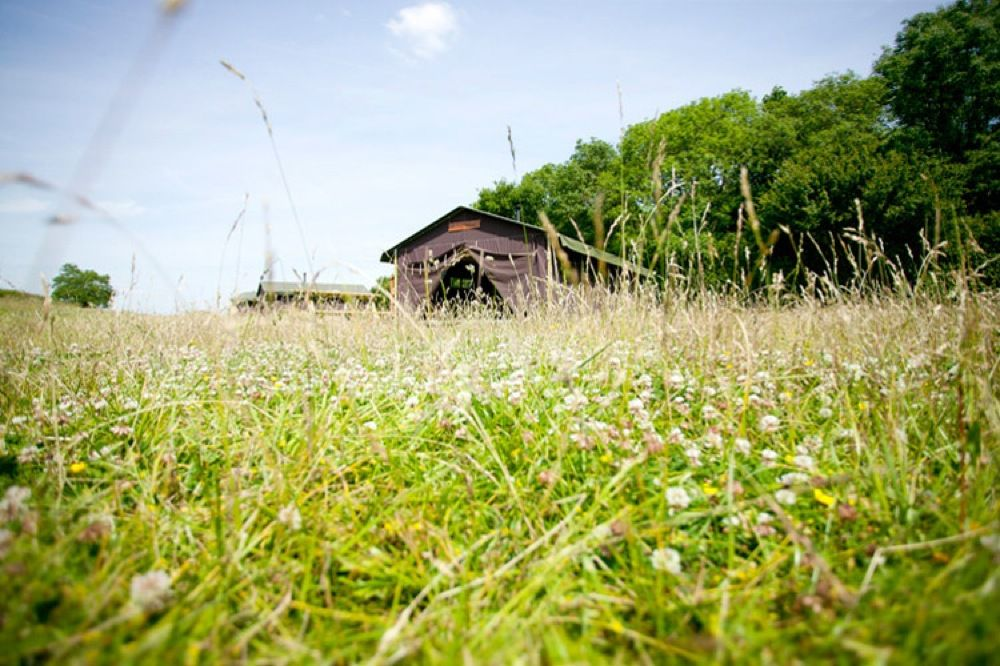 Readyfields Farm