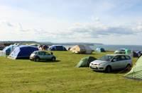 Grass Tent Pitch