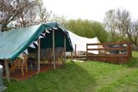 Rainbow Trout Bell Tent