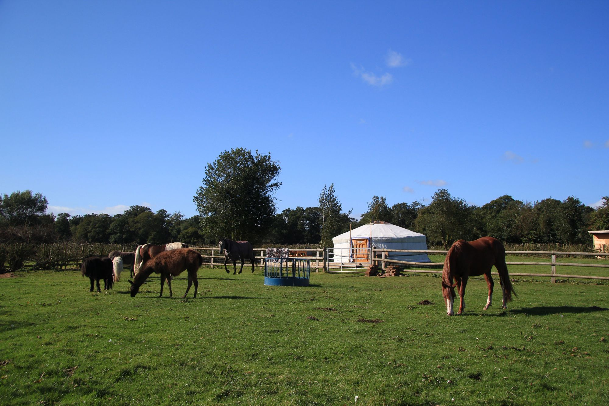 Farmyard glamping; what's not to love?
