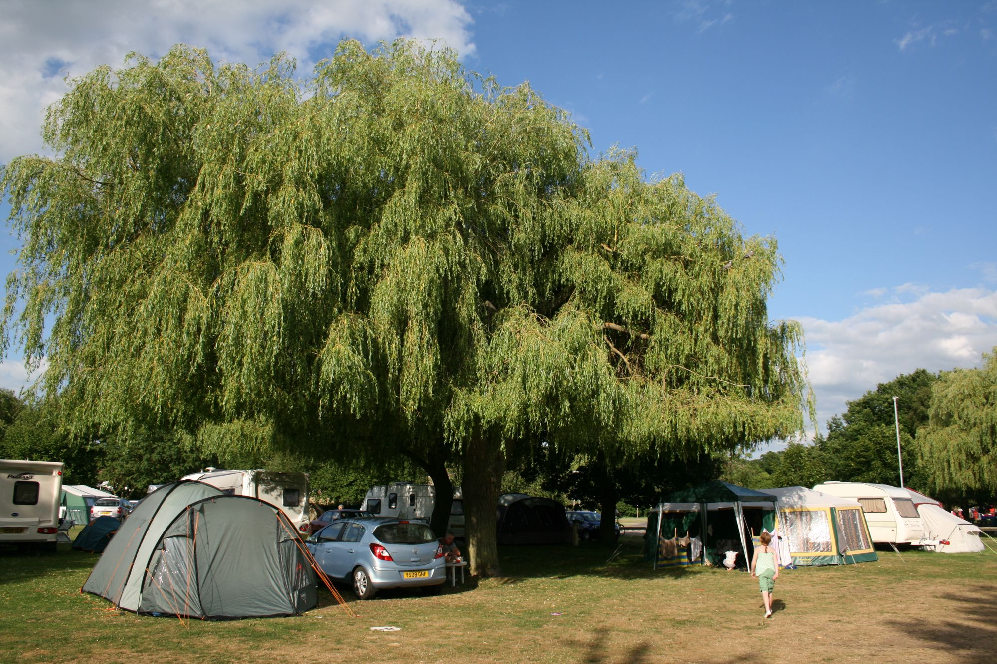 Unusually for a campsite, this one is run by a local council and actually sits within the grounds of the town's park.