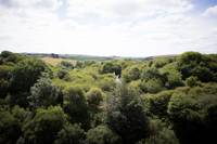 Sky 6 - Wild Camping - Private Pitch