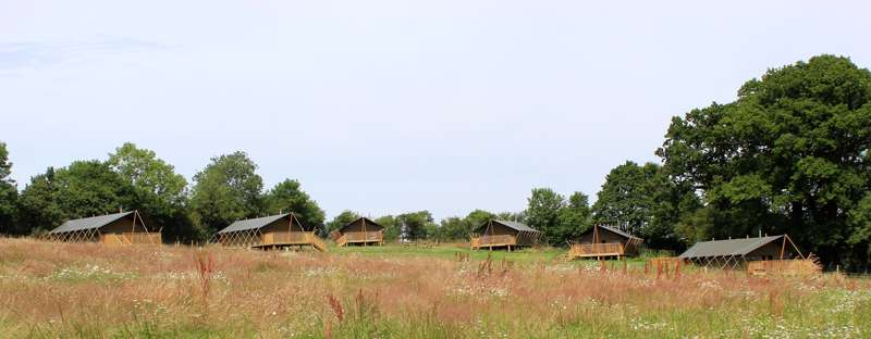 Woodland Glamping - best UK woodland glampsites - Cool Places to Stay in the UK
