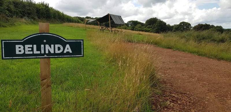 Belinda - Campervan Grass Pitch