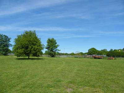 A quiet, spacious campsite on the edge of the New Forest National Park, Hampshire.