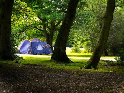 The Revival of Woodland Camping...