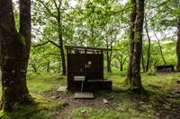 Forest yurt