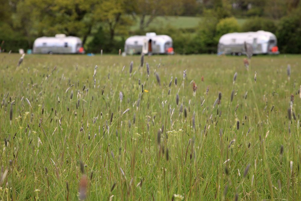 Glamping on the Isle of Wight – The very best glampsites on the Isle