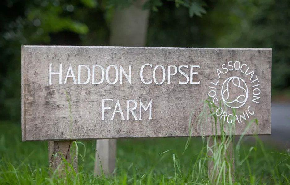 Haddon Copse Campsite