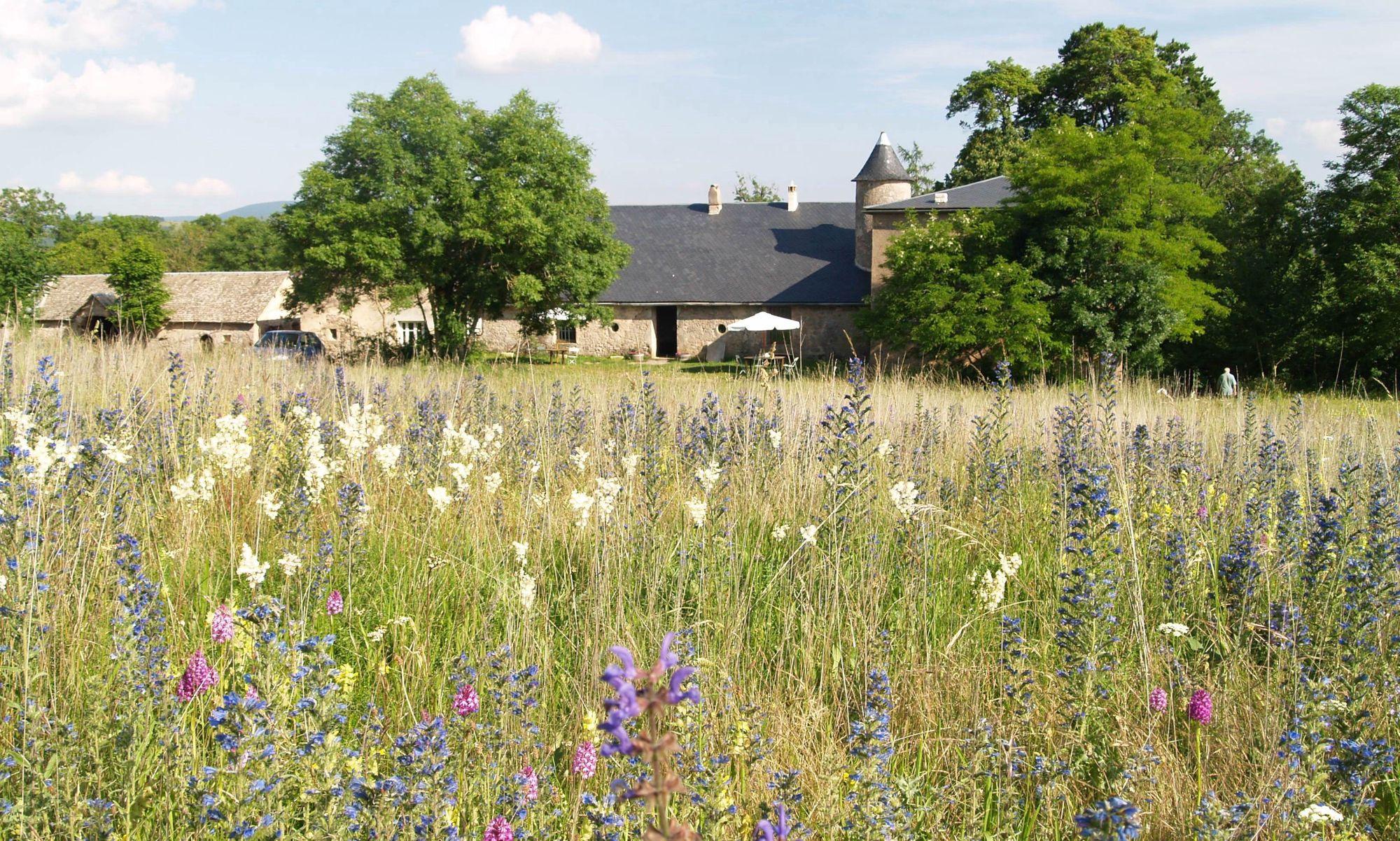 Campsites in Languedoc