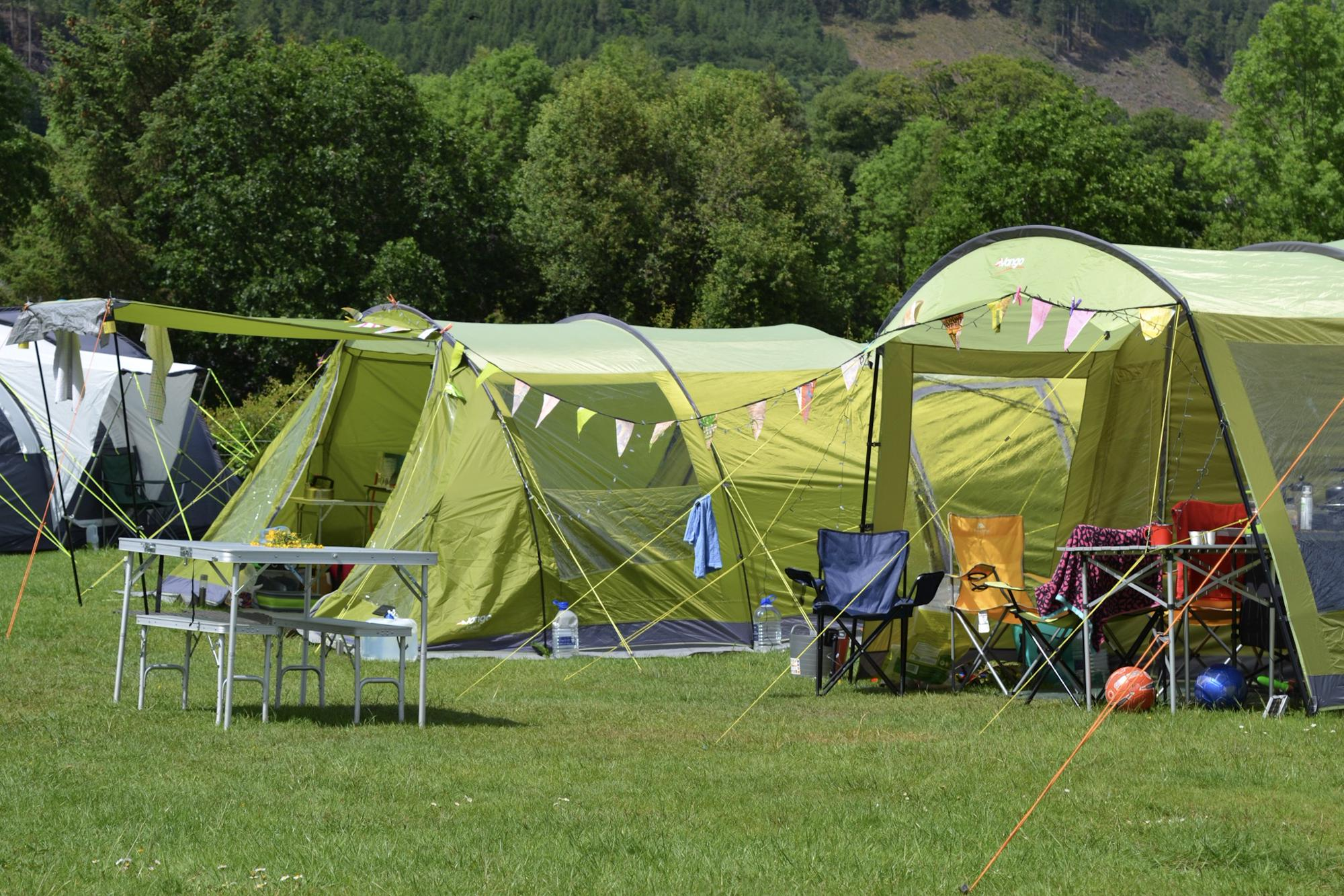 Grass Tent Pitch (no electric hook-up) 11 at Lanefoot Farm ...