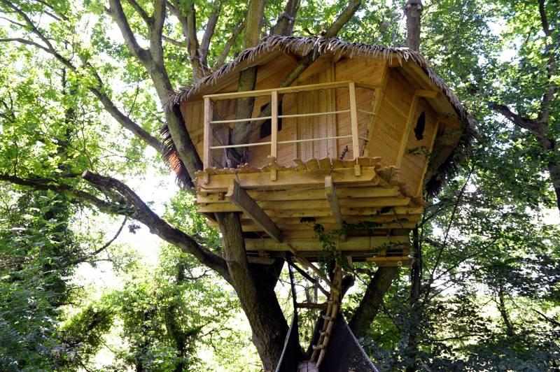 """""""Vieux Chêne"""" Tree House"""