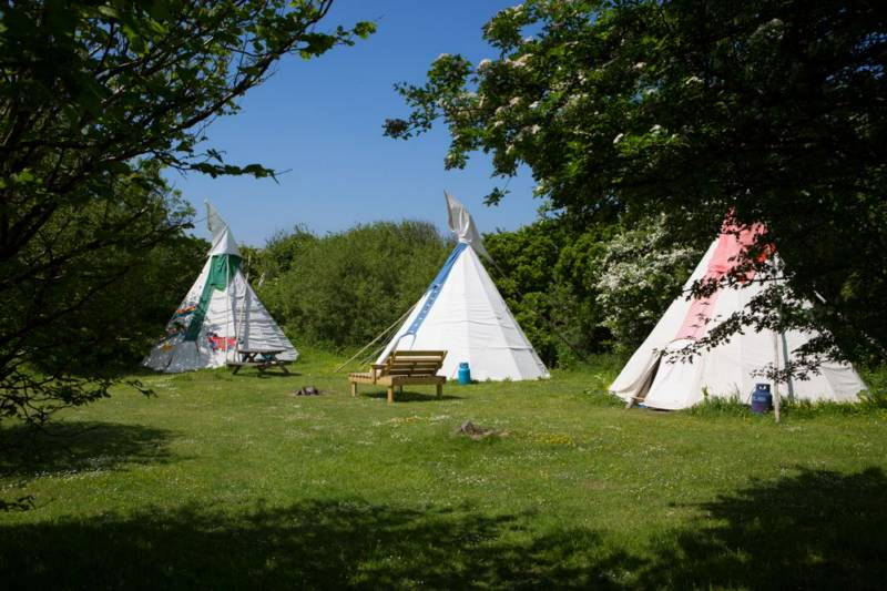 Medium Tipi 8 - Village Field