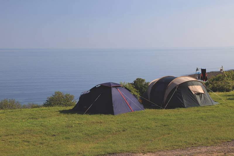 Treheli Farm is a seaside campsite with epic views, set on North Wales' Llyn Peninsula.