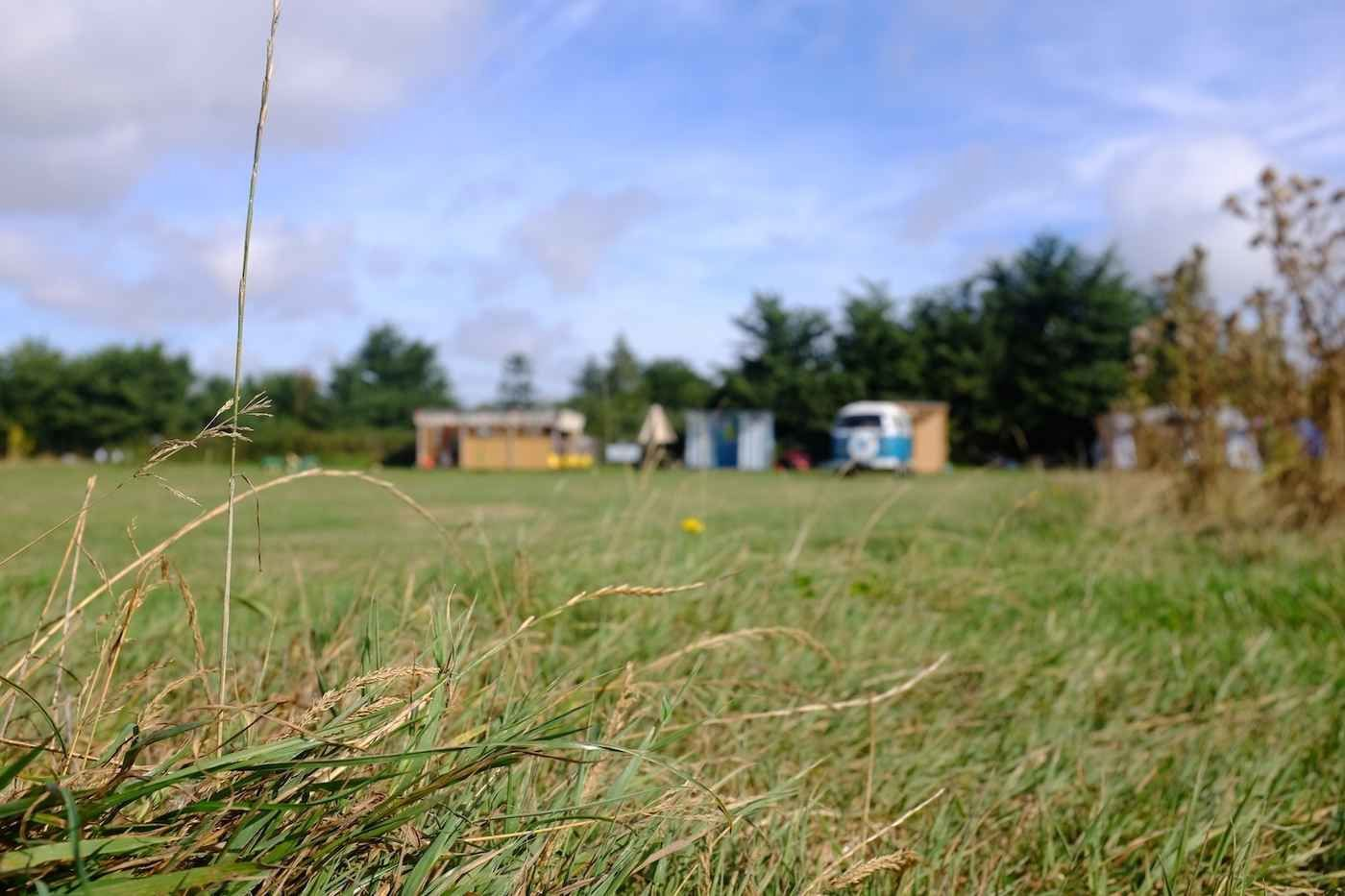 Campsites in the New Forest