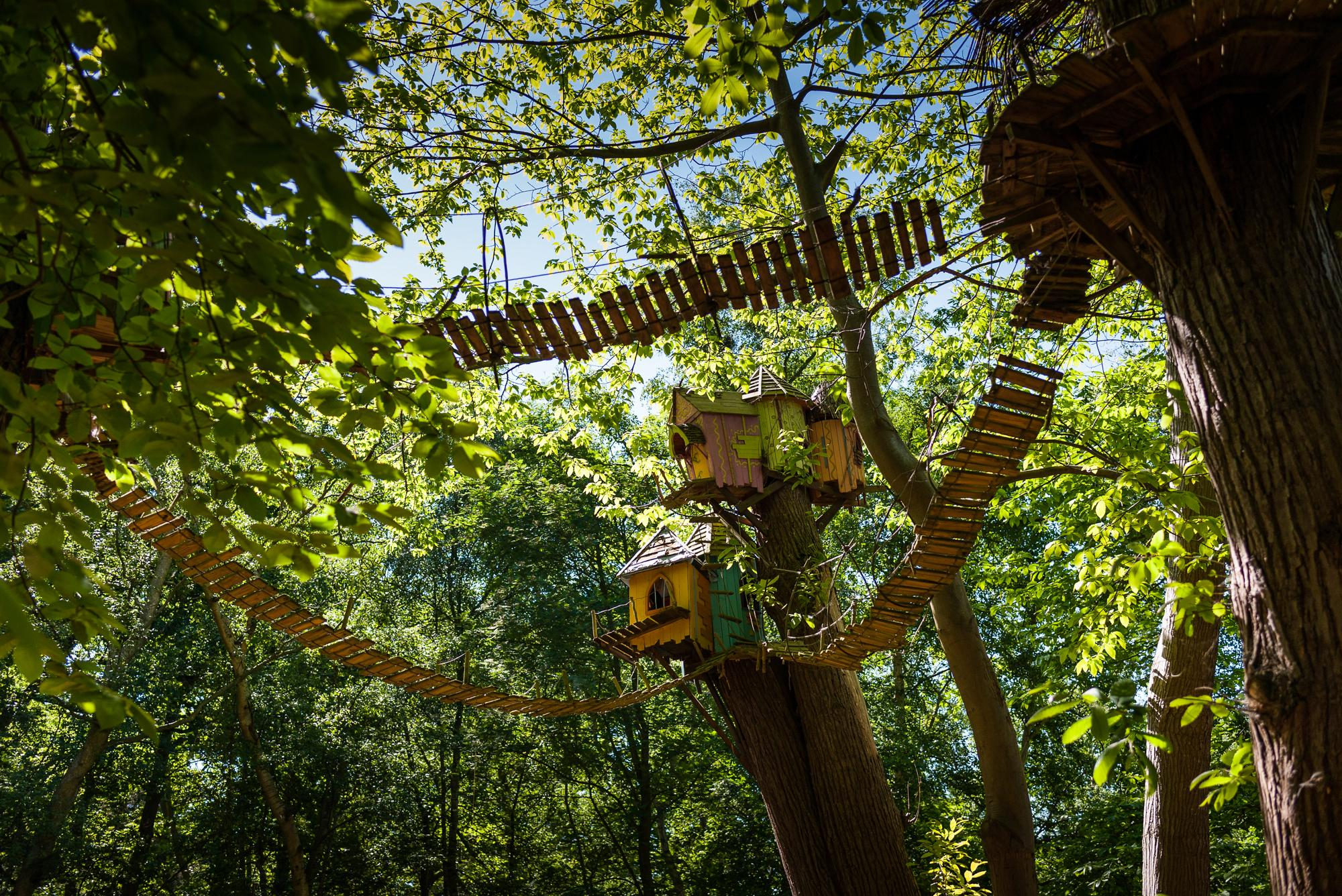 Enter the magical world of Bewilderwood, a short stroll from ABTC at Hoveton Estate