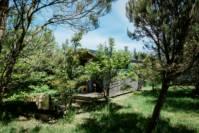 Small Woods Shepherd's Hut