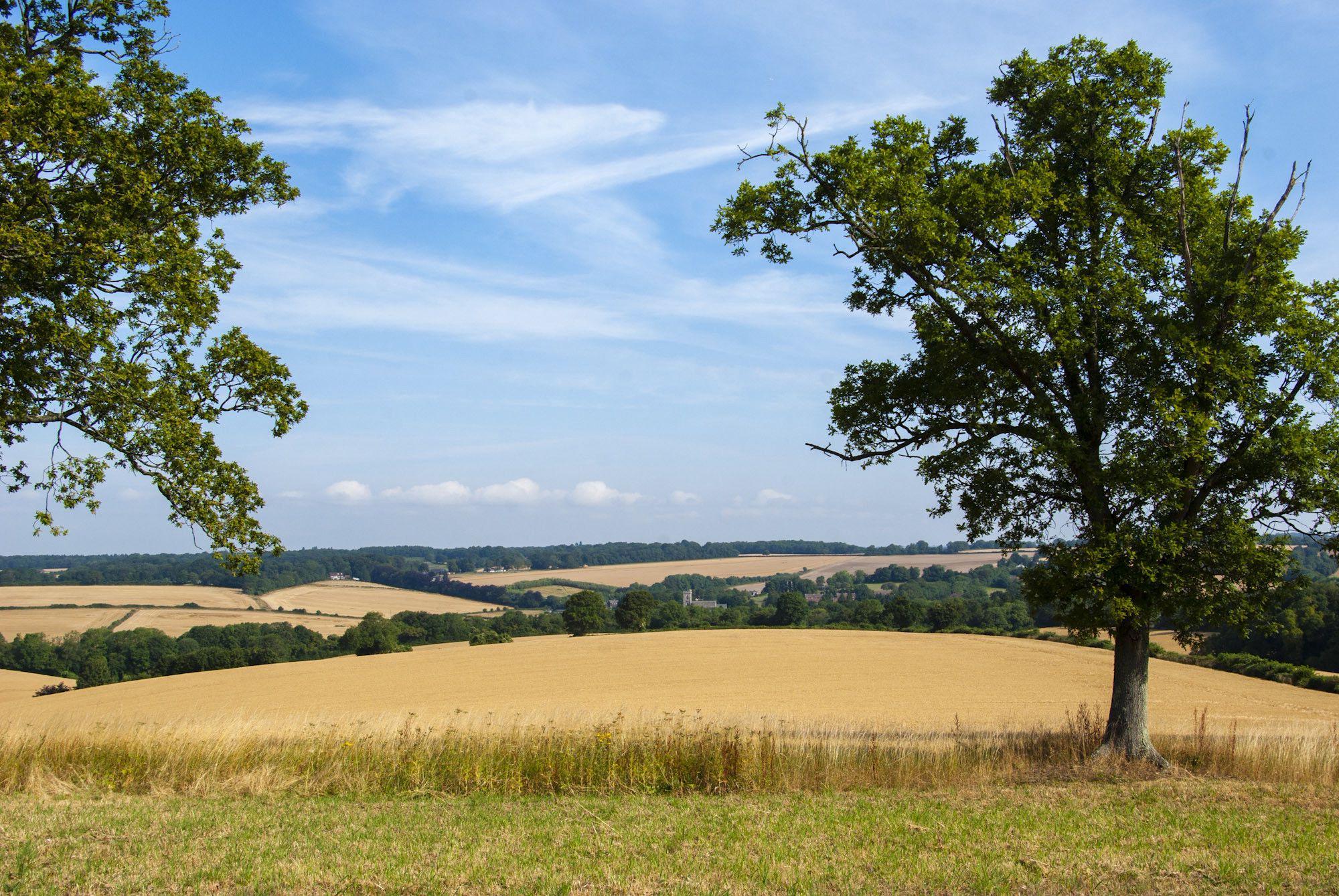 Petersfield Camping   Best campsites in Petersfield, Hampshire