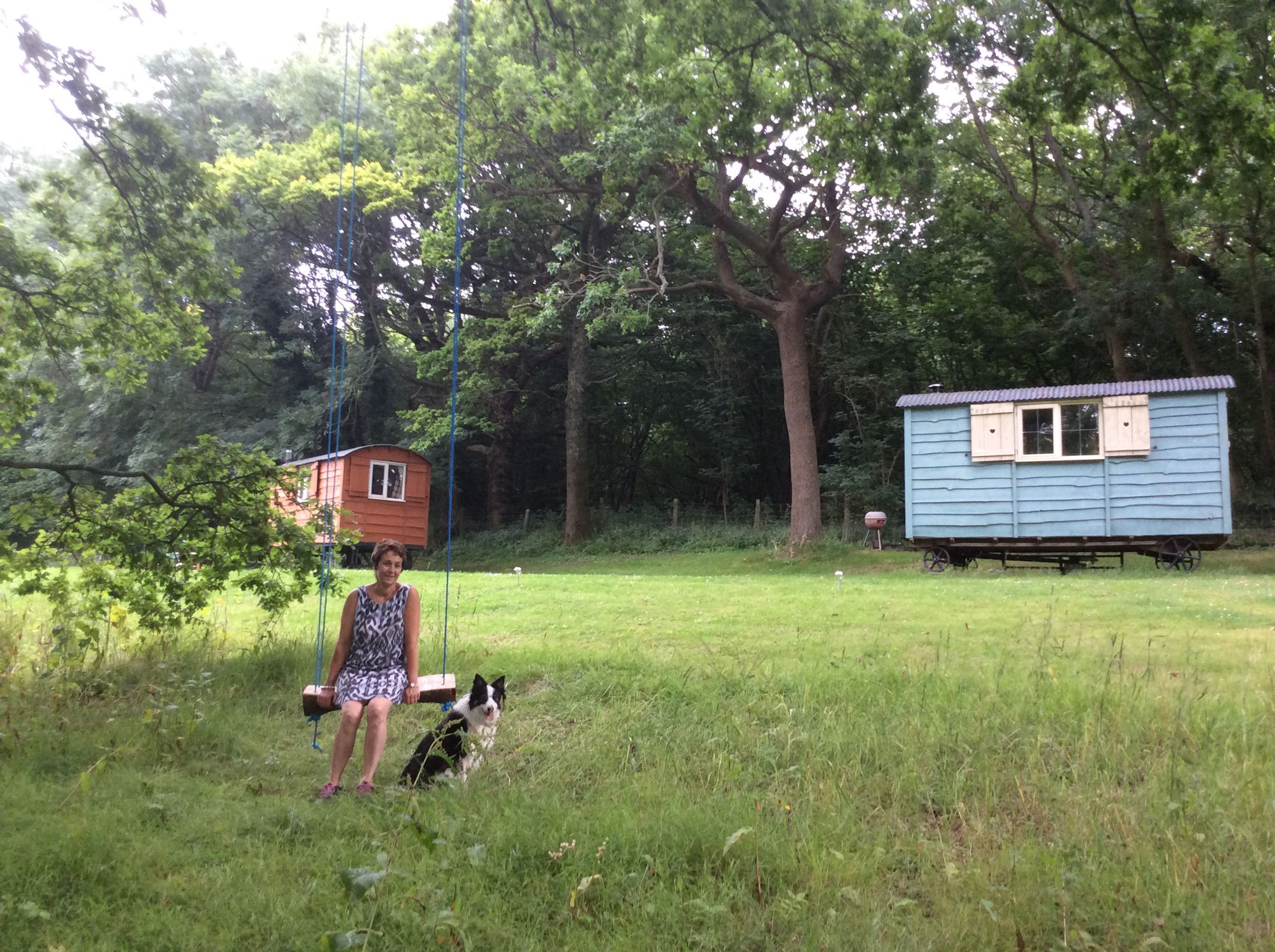 glamping with your dog