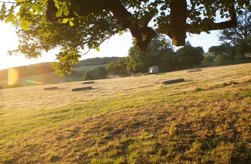Herdwick  Shepherds Hut