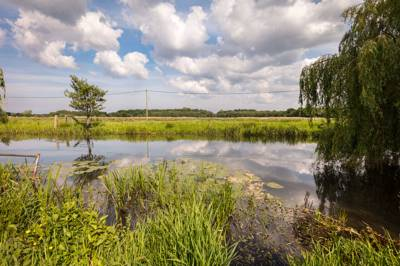 Canal Camping Honing Road, Dilham, North Walsham, Norfolk, NR28 9PL