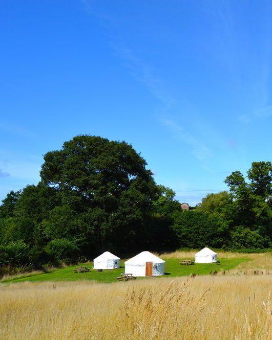 Glamping sites in Somerset