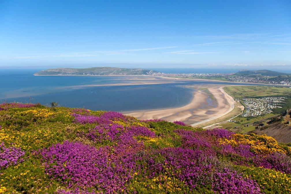 Hotels, Cottages, B&Bs & Glamping in South Wales