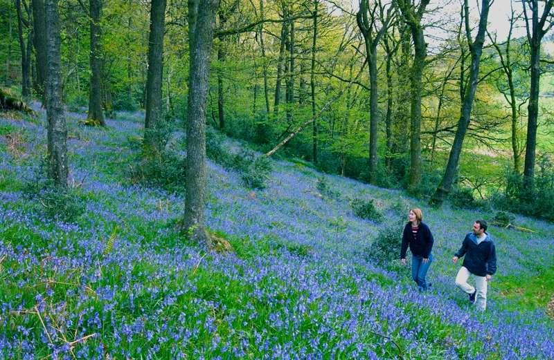 The Best Easter Walks in Britain