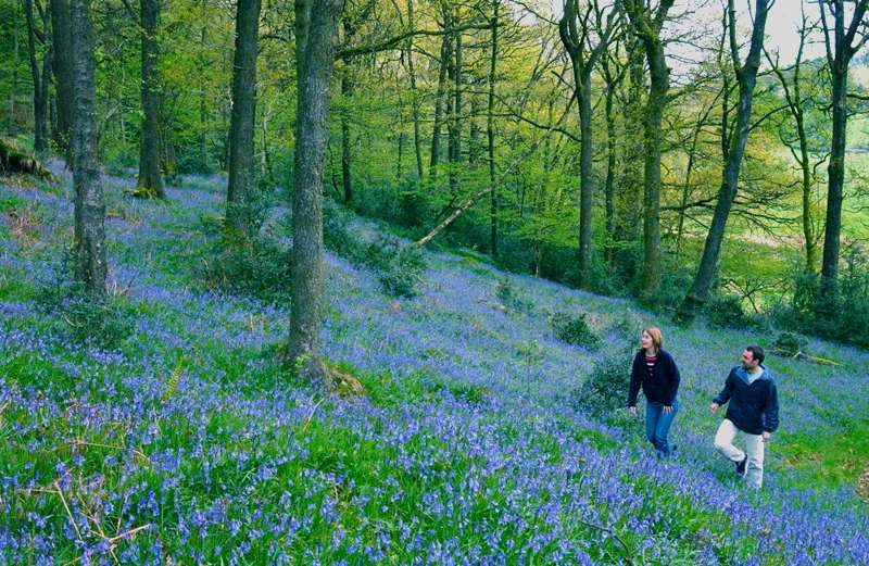The Best Easter Walks in Britain