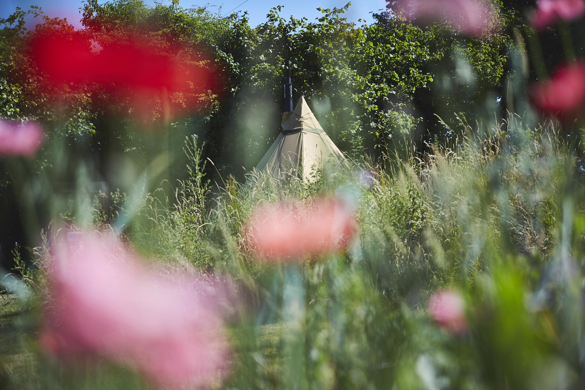 Campsites in Llanymynech – Glampingly
