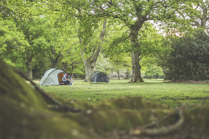 Brockenhurst Camping | Campsites in Brockenhurst, New Forest
