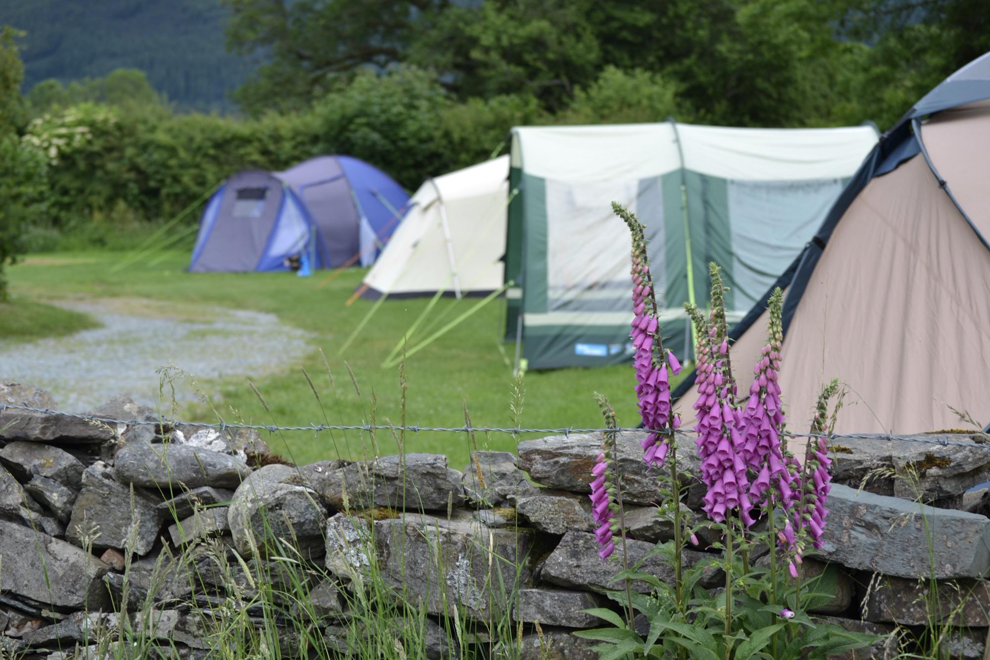 Lanefoot Farm Campsite, Lake District